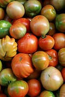 Tomatoes at market, Cardona. Barcelona province, Catalonia, Spain