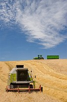 Harvester in barley field (thumbnail)