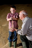 Wheat grains falling from hands of farmer and grandson