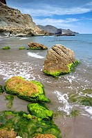 Coast. Cabo de Gata-Nijar Biosphere Reserve, Almeria province, Andalucia, Spain