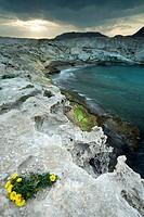 Los Escullos coast. Cabo de Gata-Nijar Biosphere Reserve, Almeria province, Andalucia, Spain