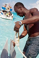 Man pulling out anchor, Grand Cayman Island