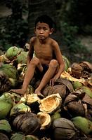 Boy is sitting on coconut husks, Nha Trang, Khánh Hòa Province, Vietnam, Asia
