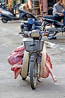 Moped with half pig, Hanoi, Vietnam