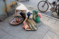 Street vendor, Hanoi, Vietnam