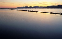 salt works of Ses Salines in the evening light, Ibiza