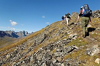 Hiker at Tombstone Territorial Park, Dempster Highway, Yukon Territory, Canada