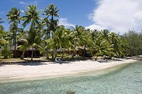 Coconut trees on the beach of Hotel Kia Ora, Avatoru, Rangiroa, The Tuamotus, French Polynesia