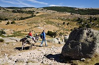 Mother and child on a hiking tour, Family hiking trip with a donkey in the Cevennes mountains, Cevennen, France