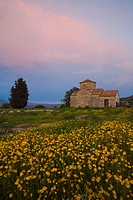 Church in a flower meadow, Kato Lefkara, Lefkara, South Cyprus, Cyprus
