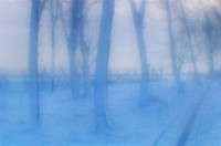 Winter. Leningrad region, Saint Petersburg. Russia. Monokle Polarizing filters