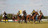 A game of polo, Timmendorf, Schleswig-Holstein, Germany