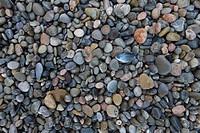 Colorful Pebbles and Stones and One Small Fish at Torrent de Pareis Beach, Near Cala de Sa Calobra, Mallorca, Balearic Islands, Spain