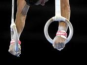Artistic Gymnastics rings