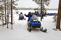 Snowmobile tour through snowy landscape, Rovaniemi, Lapland, Finland, Europe