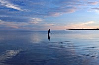Photographer standing in the lake at dusk