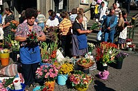 Flower sellers, Dolac market, Zagreb, Croatia, Europe