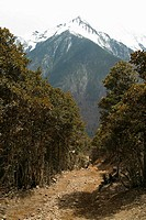 Road leading into Mountain Range in Yunnan Province, China