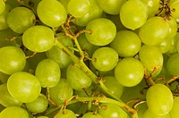 Close_up of grapes