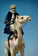 Camel and rider, Sahara Desert, Algeria, Africa