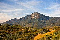 Trees on a rolling landscape with a mountain in the background, Hierve El Agua, Oaxaca, Oaxaca State, Mexico