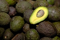 Close_up of avocados, Cuetzalan, Puebla State, Mexico
