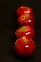 Close_up of apples in a row