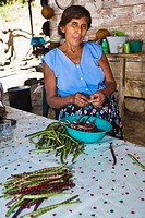 Mature woman peeling beans in a kitchen, Papantla, Veracruz, Mexico