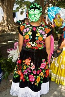 Rear view of a woman standing in wedding ceremony, Oaxaca, Oaxaca State, Mexico