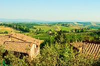 High angle view of houses with vineyard in the background, Siena Province, Tuscany, Italy