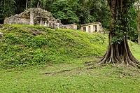 Maya site Yaxchilan, Selva Lacandona, Lakandonian Forest, Chiapas, Mexico