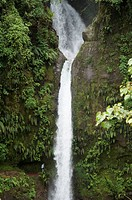 The Peace waterfall on the slopes of the Poas Volcano, Costa Rica, Central America