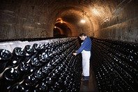 Champagne wine cellar, Reims, Champagne, Ardennes, France, Europe