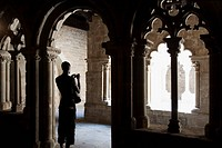 Visitor taking pictures in the cloister of the Sant Pau del Camp Benedictine monastery, Barcelona. Catalonia, Spain