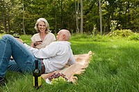 Couple having wine at picnic