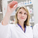 Pharmacists examining pill and pill bottle