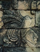 Detail of Maya stone carving at Tikal, UNESCO World Heritage Site, Guatemala, Central America