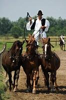 Hungarian cowboy horse show, Bugaci Town, Kiskunsagi National Park, Hungary, Europe