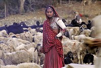 Marwa nomad woman between a shepherd, Rajasthan, India
