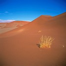 Sossusvlei Sand Dunes in Naukluft Park, Namibia, Africa