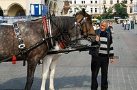 Horse and carriage in Main Market Square Rynek Glowny, Old Town District Stare Miasto, Krakow Cracow, Poland, Europe