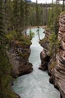 Sunwapta Falls. Jasper National Park. Rocky Mountains. Alberta. Canada