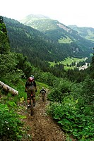 Mountain-bike freeride, Portes du Soleil, Alpes, Alps (thumbnail)