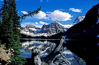 Savborjt Lake, Assiniboine, Colombie Britannique (thumbnail)