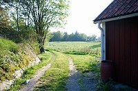 Rural scene with gravel driveway