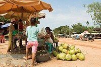 A young Cambodian family has set up a small food stall near the main avenue to sell fresh coconut drinks to traveling people
