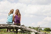 rear view of two girls sitting on tree trunk looking at sky