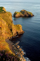Rocky Island that is connected to the North Antrim Coast by Carrick-a-Rede rope bridge