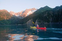 Kayaker paddles into Quicksand Cove at dawn Aialik Bay Kenai Fjords National Park Alaska Kenai Peninsula summer