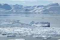 Icebergs in water, Sermilik Fjord, Greenland